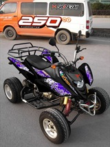 QUAD SHINERAY 250cc STXE HOMOLOGUE 2 PLACES, image N°3