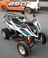 QUAD SHINERAY 250cc STXE HOMOLOGUE 2 PLACES, image N°5